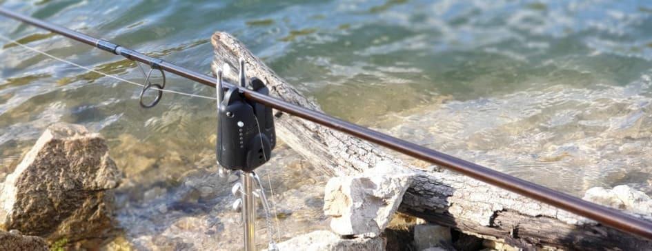 Ловля карпа на фидер: успешная рыбалка