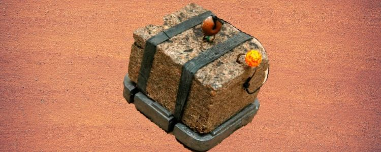Ловля сазана и карпа на макуху