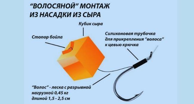 волосяной монтаж с сыром