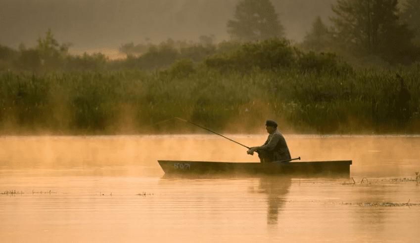 привада для рыбы